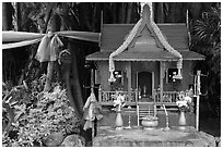 Spirit house and banyan roots, Phi-Phi island. Krabi Province, Thailand (black and white)
