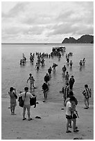 Large group of tourists disembarking from boats, Ko Phi-Phi Don. Krabi Province, Thailand ( black and white)
