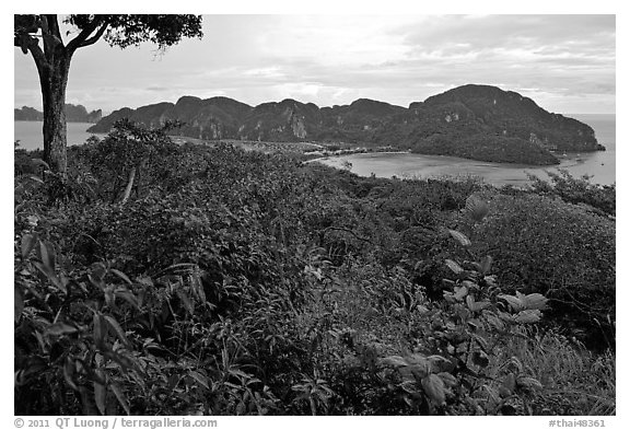 Tropical vegetation, bay, and hills, Ko Phi-Phi Don. Krabi Province, Thailand (black and white)