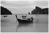Long Tail boats moored in bay, early morning, Ko Phi Phi. Krabi Province, Thailand (black and white)