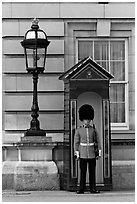 Guard and guerite, Buckingham Palace. London, England, United Kingdom ( black and white)