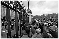 Crowds at the grids in front of Buckingham Palace watching the changing of the guard. London, England, United Kingdom (black and white)