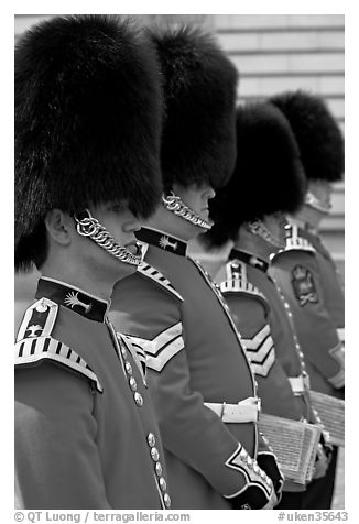 Musicians of the Guard  with tall bearskin hat and red uniforms. London, England, United Kingdom (black and white)