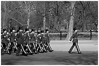 Guards marching near Buckingham Palace. London, England, United Kingdom (black and white)