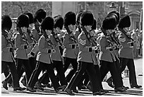 Guards with tall bearskin hats  marching near Buckingham Palace. London, England, United Kingdom ( black and white)
