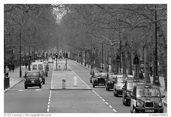 Black cabs and street near Saint James Park with. London, England, United Kingdom (black and white)