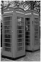 Two red phone boxes. London, England, United Kingdom ( black and white)