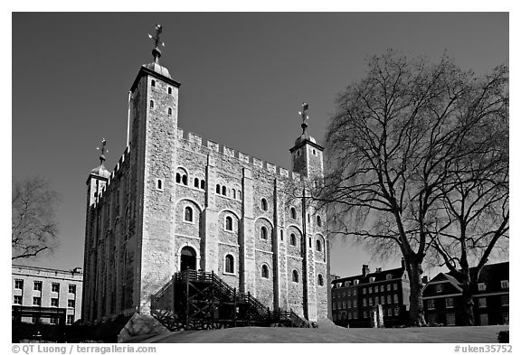 Black and white picture photo white tower and tree the tower of london london england united kingdom