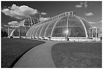 Palm House, built mid 19th century, first large-scale structural use of wrought iron. Kew Royal Botanical Gardens,  London, England, United Kingdom (black and white)