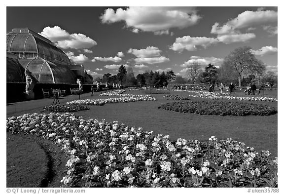 Flower bed and Palm House, afternoon. Kew Royal Botanical Gardens,  London, England, United Kingdom (black and white)