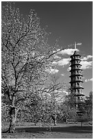 Great Pagoda by William Chambers. Kew Royal Botanical Gardens,  London, England, United Kingdom (black and white)