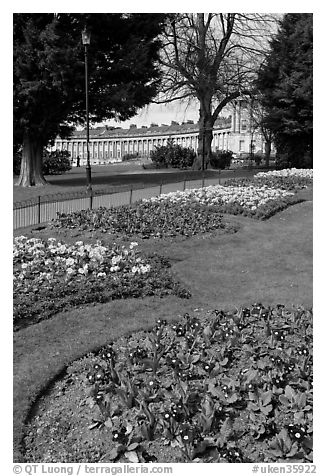 Flowers in park, with Royal Crescent in the background. Bath, Somerset, England, United Kingdom (black and white)