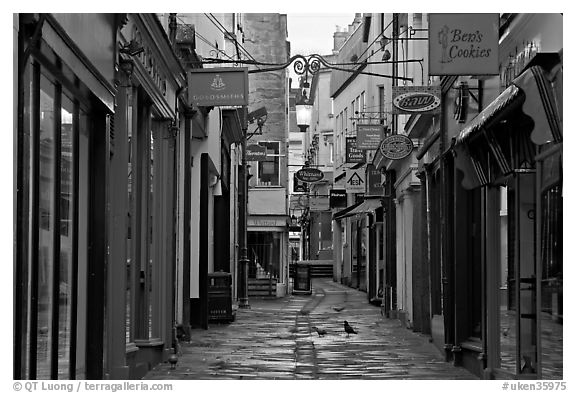 Shops lining narrow street. Bath, Somerset, England, United Kingdom (black and white)