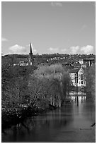 River Avon, willows, and church spire. Bath, Somerset, England, United Kingdom (black and white)