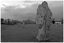 Circle of standing stones in pasture, Avebury, Wiltshire. England, United Kingdom ( black and white)