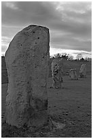 Megaliths forming part of a 348-meter diameter stone circle, sunset, Avebury, Wiltshire. England, United Kingdom (black and white)