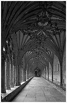 Cloister gallery, Canterbury Cathedral. Canterbury,  Kent, England, United Kingdom ( black and white)