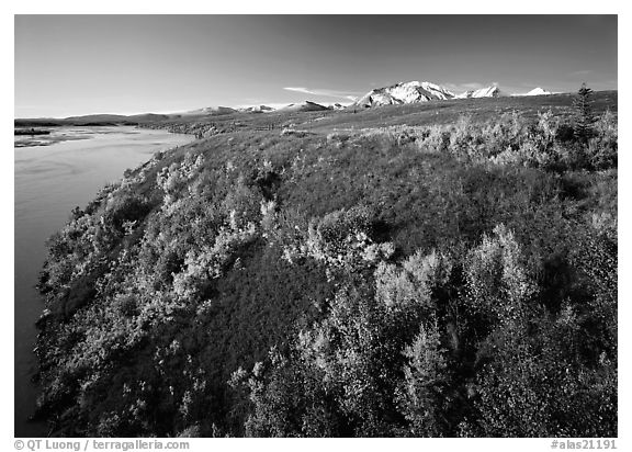 Susitna River and autumn colors on the tundra. Alaska, USA (black and white)