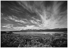 Clouds, tundra in fall color, and lake along Denali Highway. Alaska, USA ( black and white)