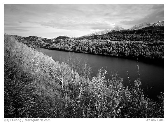 Long Lake surrounded by aspens in autumn color. Alaska, USA (black and white)