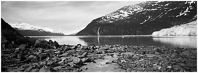 Fjord seascape with tidewater glacier. Prince William Sound, Alaska, USA (Panoramic black and white)