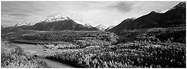 Autumn landscape with river, aspen forest, and snowy mountains. Alaska, USA (Panoramic black and white)