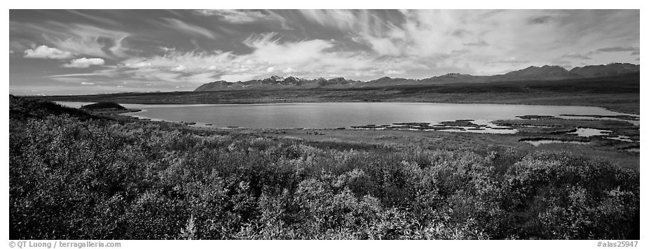 Tundra landscape with lake in autumn. Alaska, USA (black and white)