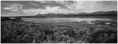 Tundra landscape with lake in autumn. Alaska, USA (Panoramic black and white)