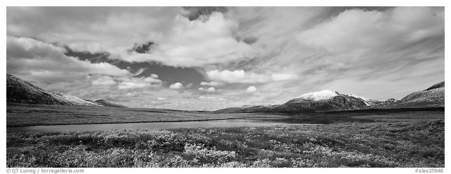Tundra landscape and clouds in autumn. Alaska, USA (black and white)
