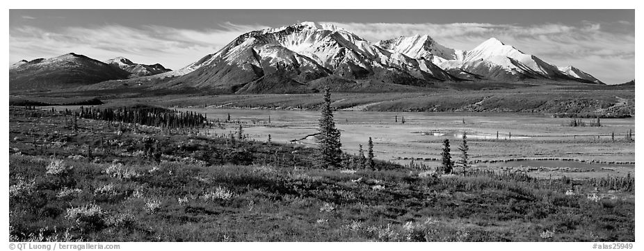 Tundra autumn scenery with snowy peaks. Alaska, USA (black and white)