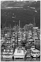 Yachts anchored in small boat harbor. Whittier, Alaska, USA (black and white)