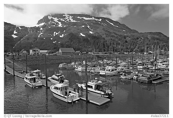 Yachts ready for sailing and harbor. Whittier, Alaska, USA