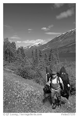 Fisherman hiking out from lake with full gear. Alaska, USA (black and white)