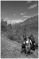 Fisherman hiking out from lake with full gear. Alaska, USA ( black and white)