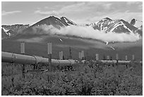Trans-Alaska Pipeline and mountains. Alaska, USA (black and white)