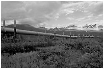Alyeska Pipeline and mountains. Alaska, USA ( black and white)