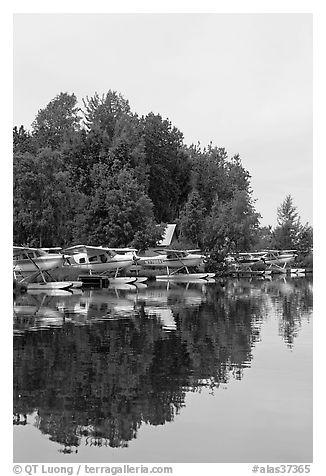 Seaplanes on the shore of Lake Hood, the largest sea plane base in the world. Anchorage, Alaska, USA (black and white)