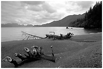Beach and Resurection Bay at Lowell Point. Seward, Alaska, USA (black and white)