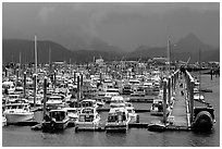 Small Boat Harbor on the Spit. Homer, Alaska, USA ( black and white)