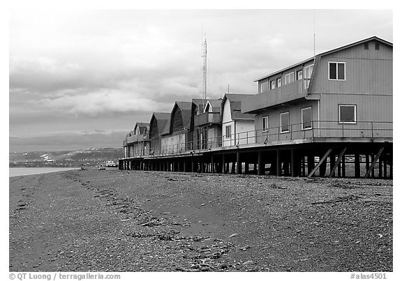 Beach and stilt houses on the Spit. Homer, Alaska, USA