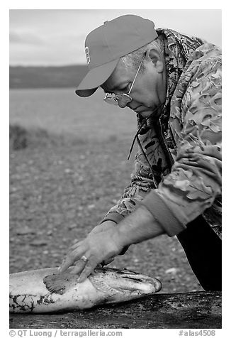 Fisherman preparing a salmon freshly caught in the Fishing Hole. Homer, Alaska, USA (black and white)