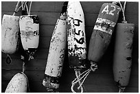 Buoys hanging on the side of a boat. Homer, Alaska, USA ( black and white)