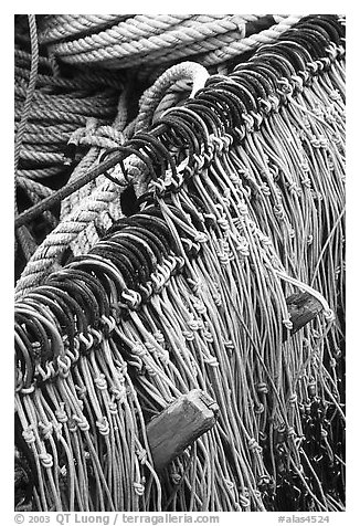 Fishing hooks. Homer, Alaska, USA (black and white)