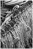 Fishing hooks. Homer, Alaska, USA ( black and white)
