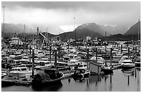Small Boat Harbor on the Spit with Kenai Mountains in the backgound. Homer, Alaska, USA (black and white)