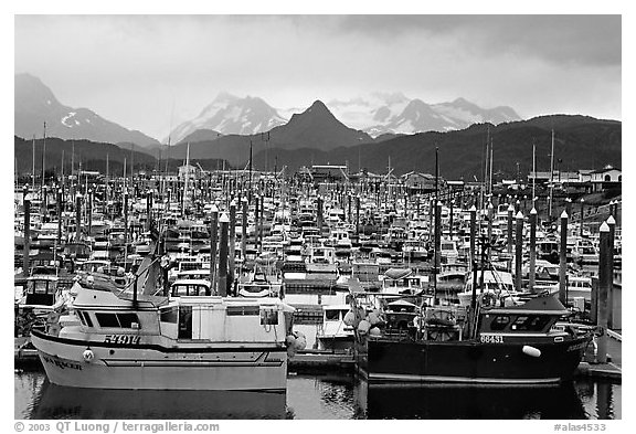 Small Boat Harbour on the Spit with Kenai Mountains in the backgound. Homer, Alaska, USA (black and white)