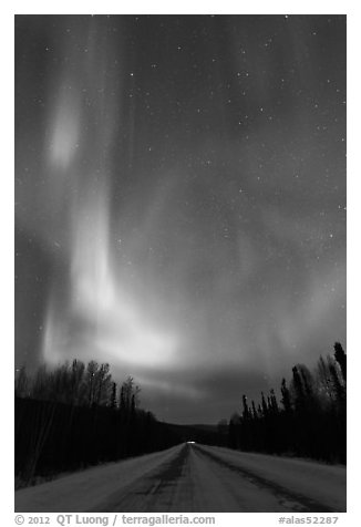 Road with northern lights above. Alaska, USA (black and white)