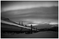 Trans Alaska Oil Pipeline at night with Northern Lights. Alaska, USA ( black and white)