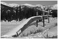 Trans Alaska Oil Pipeline in winter. Alaska, USA ( black and white)