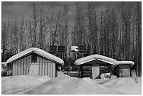 Cabins and solar panels. Wiseman, Alaska, USA ( black and white)